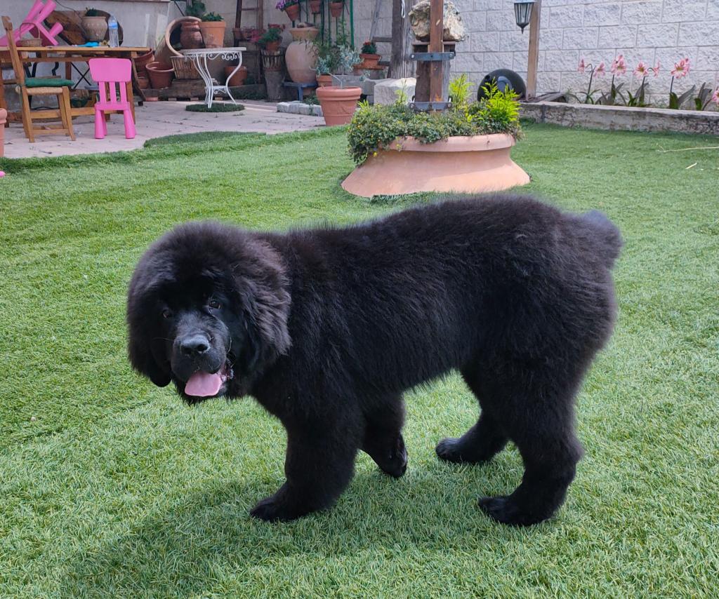Zahara, 5 meses